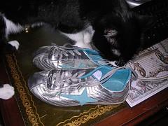 Sneakers3 liten