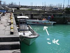 パラセールボート.JPG