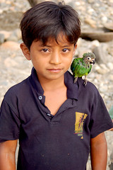 Boy with Parrot, Ecuador photo by anst89