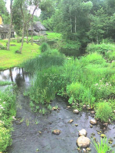 Looduskaunis koht WiFi leviala lähedal