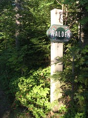 picture of Walden Cabin driveway