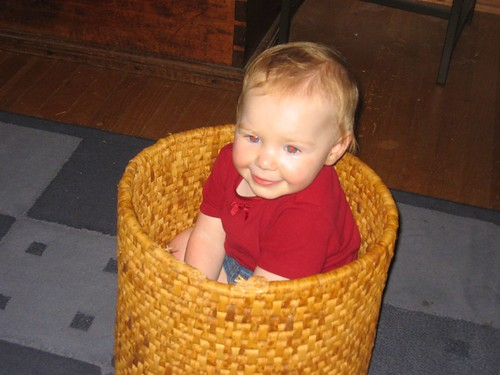 Leda in a Basket