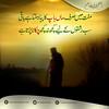 28083256180_523d3fa8ba_t