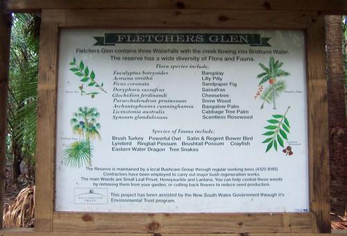Fletchers Glen flora & fauna