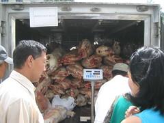Sheep sales wagon