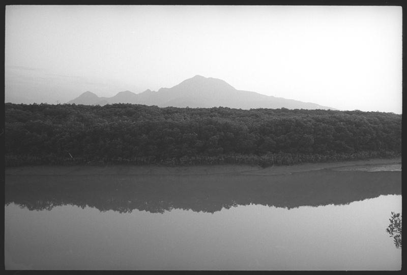 200605淡水紅樹林