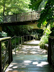 ferndell walkways
