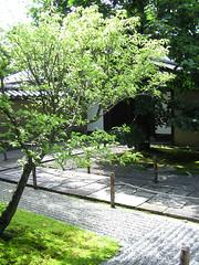 京都紫野・大徳寺大仙院