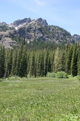 Meadow on Esmeralda Basin trail