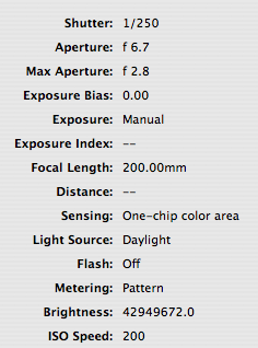 data for moon tonight