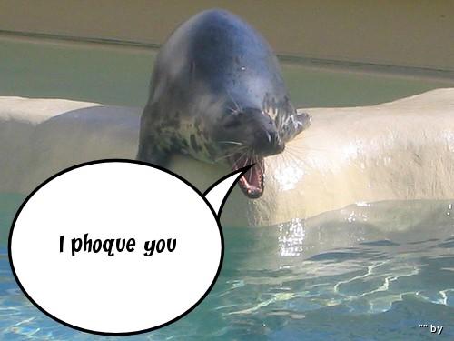 I Phoque You