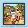 32482893607_ba3f85d151_t