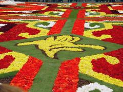 Flower Carpet - Brussels Symbol