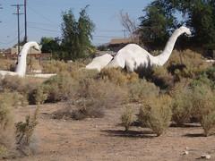Rancho Dinosaur