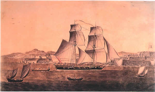 Carsario Bermude