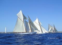 Barcos de epoca, IV copa del Rey, Mahón
