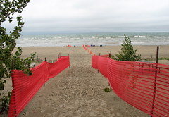 Wasaga Olympic Triathlon start?