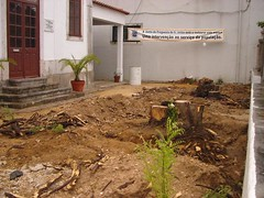 Escola Conde Ferreira