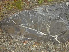 Whale Petroglyphs - P1010085