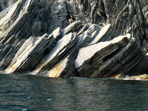 Husbear on large rock