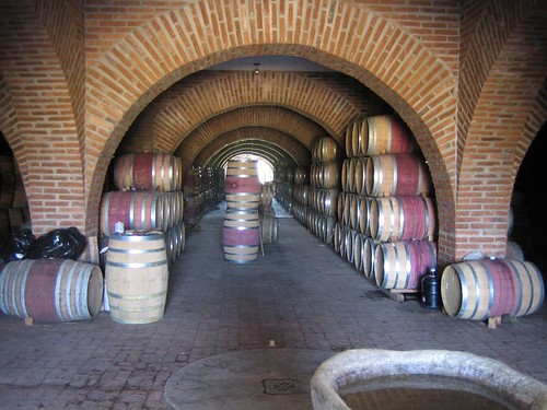 Looking back, the cellar