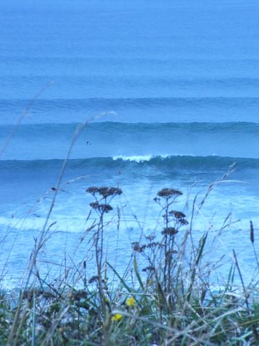 265116407 d0383e8683 Fotos para el Concurso  Marketing Digital Surfing Agencia