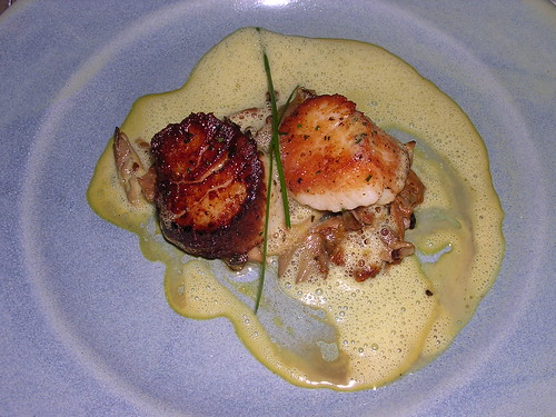 Seared Scallops with Mushroom Friccassee and Buternut Squash Emulsion