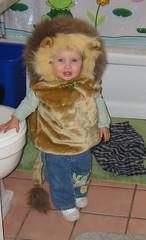 lionfront