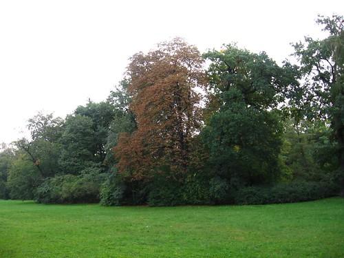 Park Szczytnicki (I)