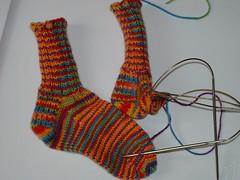 Toby's Socks