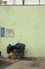 33204083788_ef7894c3ce_t