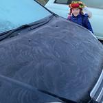 Pretty ice patterns<br/>22 Jan 2019
