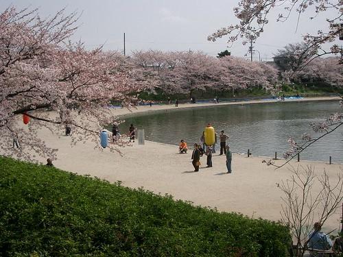 Tennogawa 2