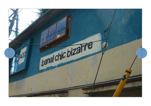 banal_chic_bizarre