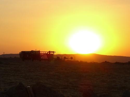 Spanish Sun