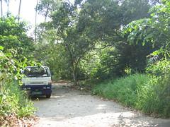 Bin Kiang 2005