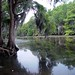 Southwest Louisiana - Sabine River - July 2002