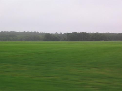 Rhode Island turf