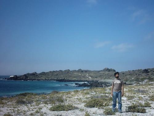 Fiestas Patrias en Isla Dama, Reserva Natural Pinguino de Humboldt, Punta de Choros, Chile