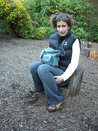 little stump seat!