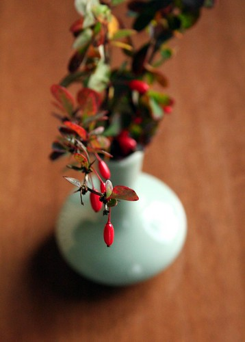 Berries in celadon