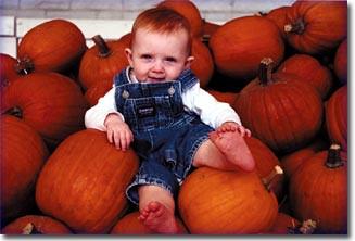 Barksdale-Pumpkin-Baby