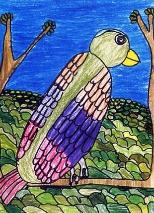 oiseauexotique1