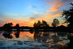 Prior Lake, Minnesota photo by Liz Nemmers