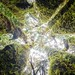 Gomera_160322_1901-HDR