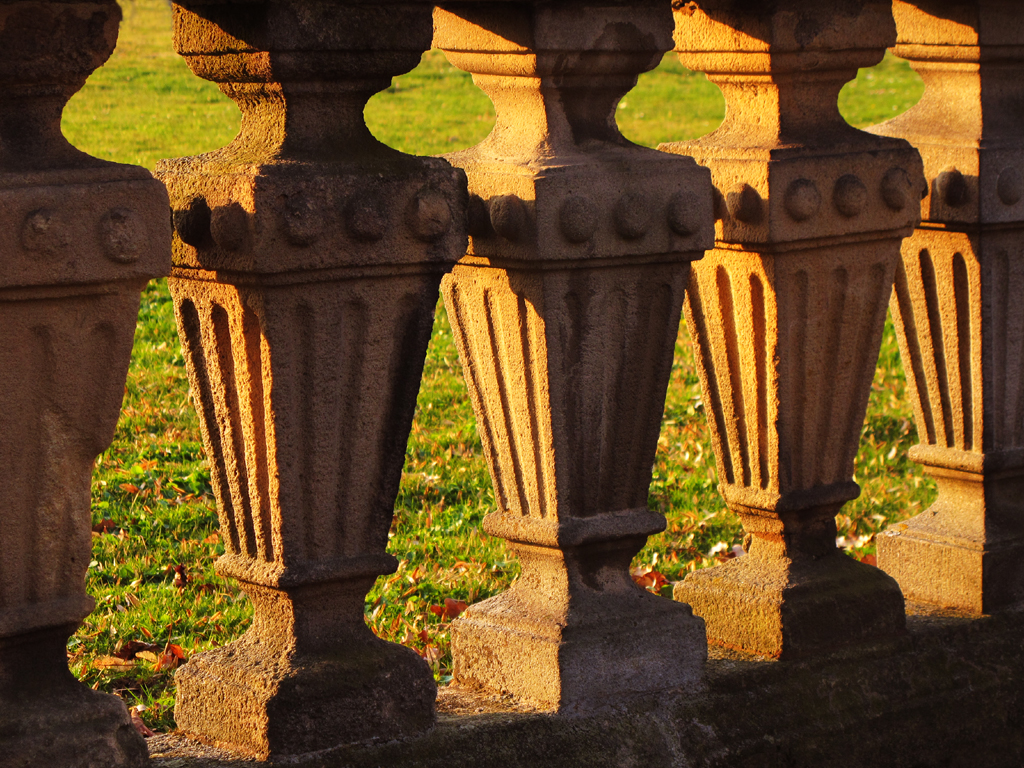 Picture Puzzle - Balusters or Frogs ? photo by Batikart