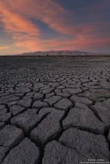 Cracks - Alviso, Ca photo by JaveFoto