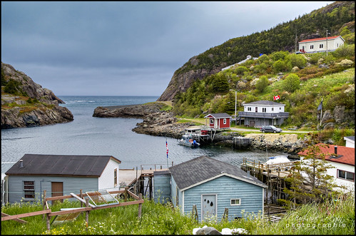 Quidi Vidi Harbour photo by Guylaine Begin