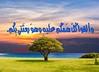 41117255472_4aeafb3e27_t