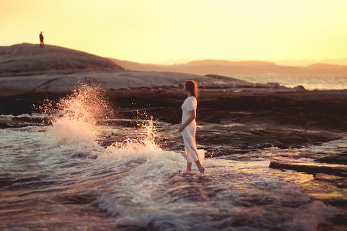 The Return photo by Elizabeth Gadd